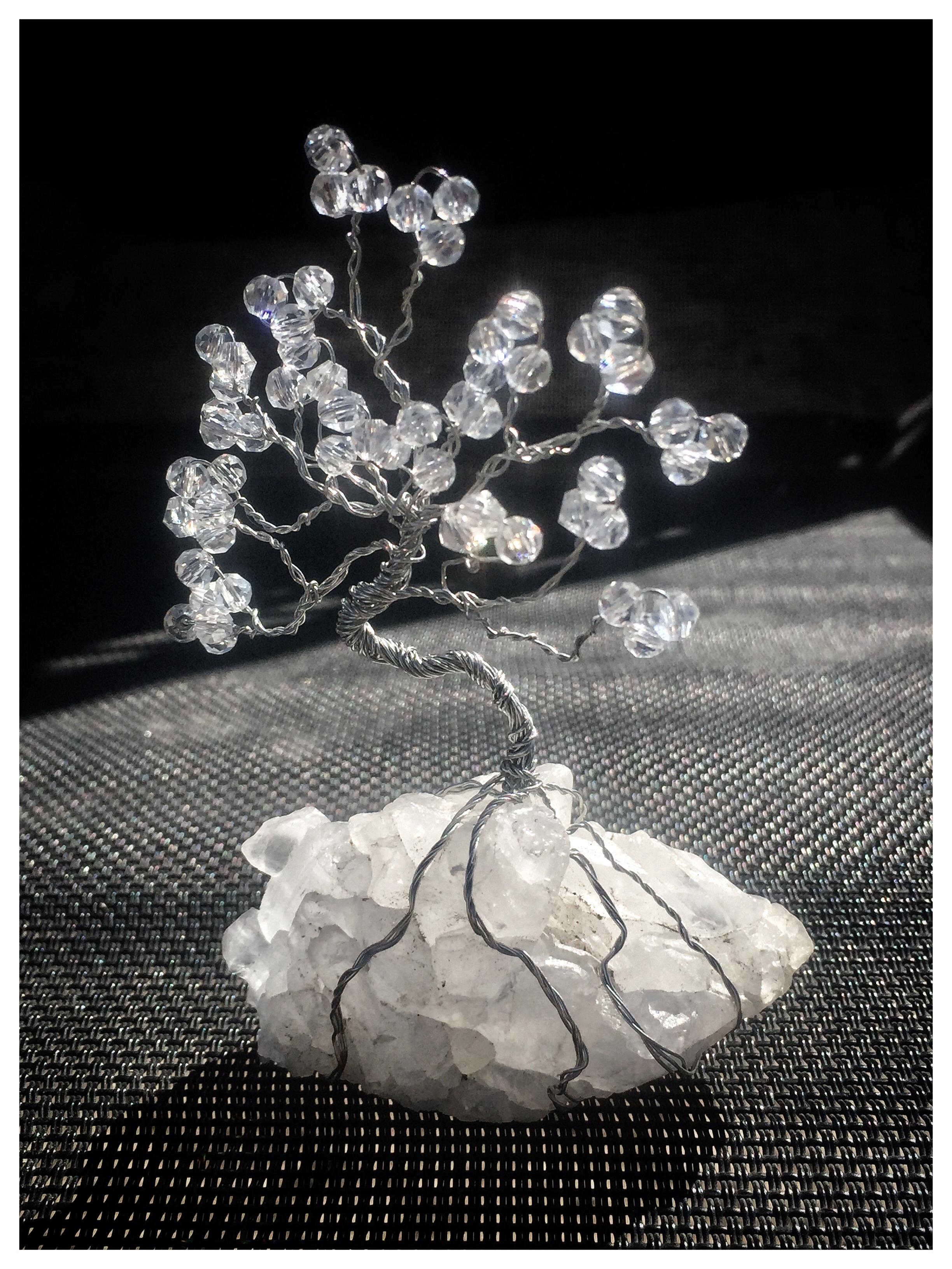 Tree of Life New Beginning