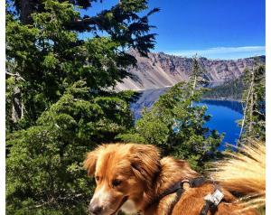 Crater Lake Oregon 5