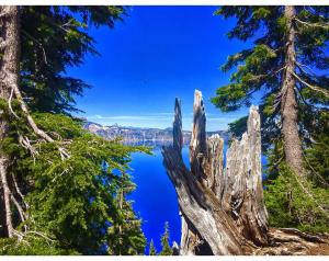 Crater Lake Oregon 1